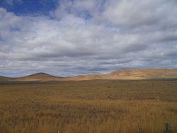 Miles of wheat fields