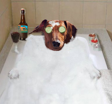 Image result for national bathtub day
