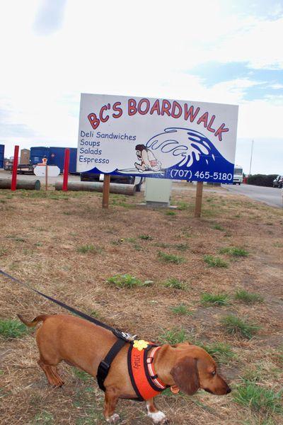 BC's Boardwalk