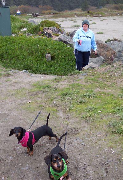 Kiwi and Cosmo