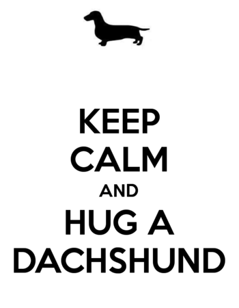 Keep-calm-and-hug-a-dachshund