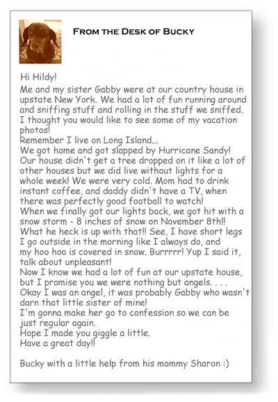 Bucky's Letter_edited-1